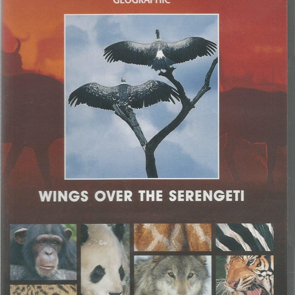 Wings Over The Serengeti (1995)