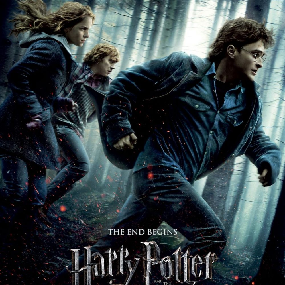 Harry Potter & The Deathly Hallows Part 1 (2010)